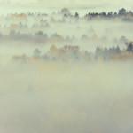 Niebla en Oliván